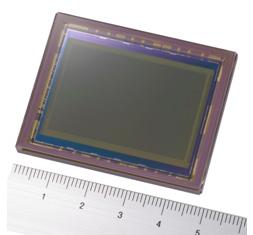Полнокадровый сенсор Sony: 24 мегапиксела для