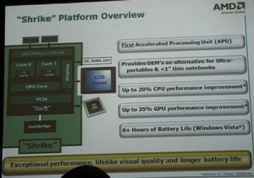 Блок-схема AMD Swift. Двухъядерный процессор с одним видеоядром.