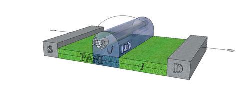 Базовая структура мемристора на основе полианилина