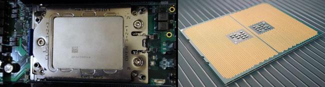Процессоры AMD EPYC (вид сверху и снизу)